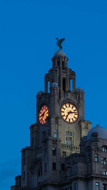 vertical t/l liver building, liverpool, united kingdom - liverpool england stock videos & royalty-free footage