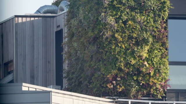 a vertical living wall on the side of an apartment block - wall building feature stock videos & royalty-free footage