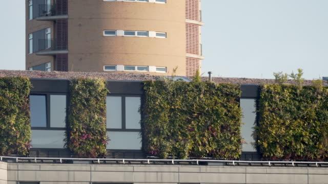 vídeos y material grabado en eventos de stock de una pared de estar vertical en el lado de un bloque de apartamentos - reino unido
