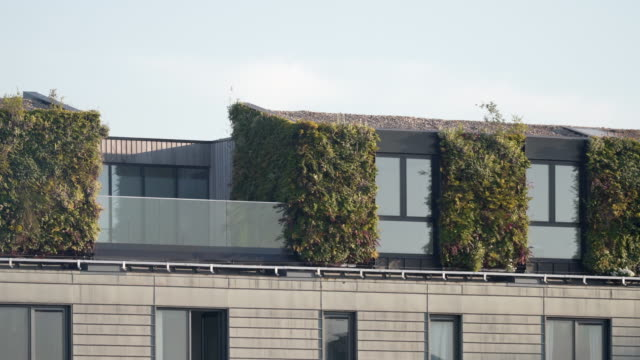 a vertical living wall on the side of an apartment block - building exterior stock videos & royalty-free footage