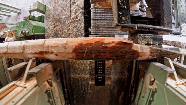 LD Vertical saw cutting a log into planks