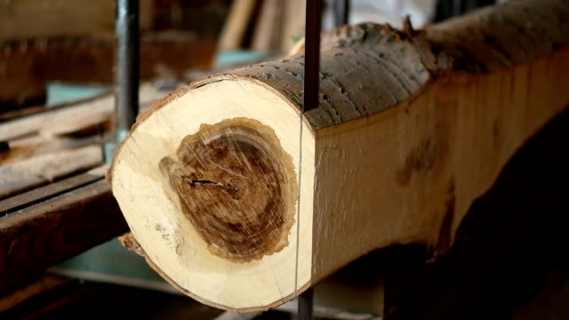 slo mo vertical saw cutting a log - timber stock videos and b-roll footage