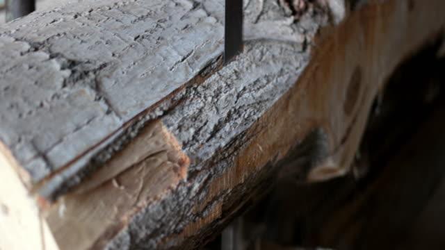 Vertical saw cutting a log