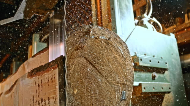 slo mo vertical saw cutting through a log - timber yard stock videos & royalty-free footage