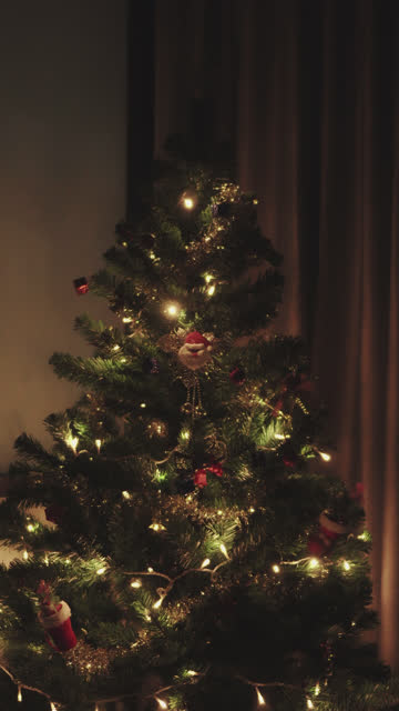 vertical shot of twinkling christmas tree - fairy lights stock videos & royalty-free footage