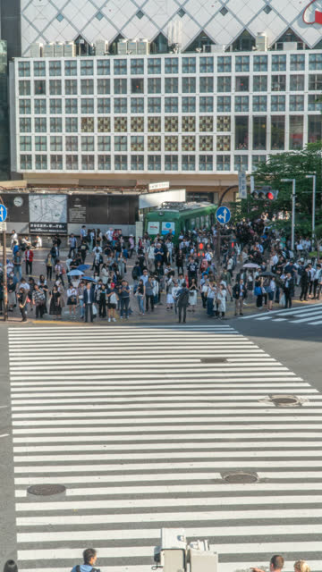 vertical timelapse - pedestrians at shibuya crossing in tokyo - ginza stock videos & royalty-free footage