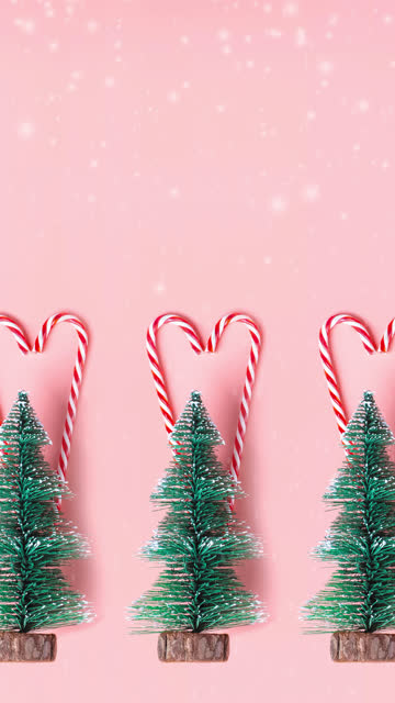 vertical Tree Christmas tree with candy cane hanging on pastel pink wall with white Merry christmas word.Holiday festive celebration greeting card