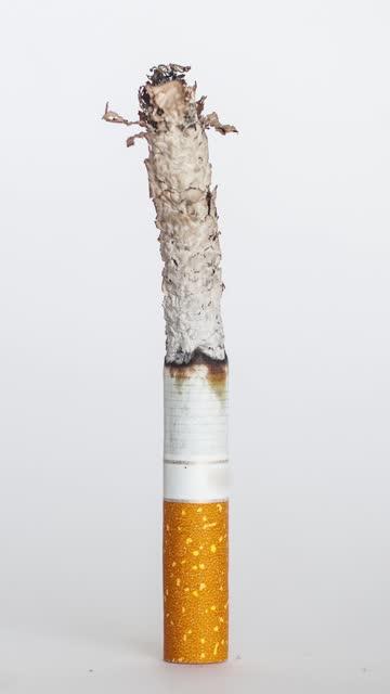土粘土から物を作る垂直ビデオ - 禁煙マーク点の映像素材/bロール
