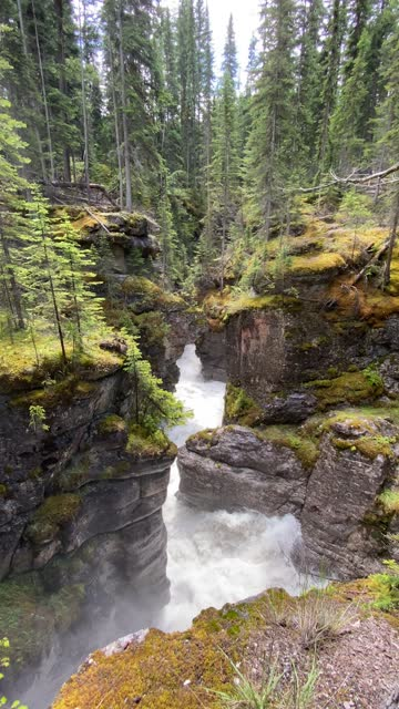 4k vertical video of maligne canyon in jasper national park, alberta, canada - maligne river stock videos & royalty-free footage