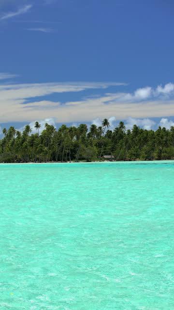 vertical view of luxury paradise island bora bora - polynesiskt ursprung bildbanksvideor och videomaterial från bakom kulisserna