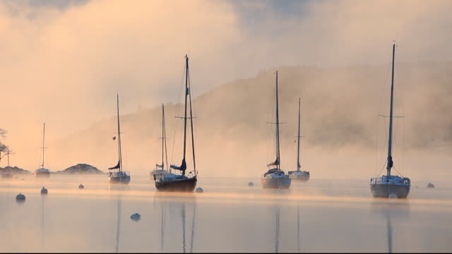 vidéos et rushes de very cold winter weather with mist at dawn on lake windermere, lake district, uk. - cygne tuberculé