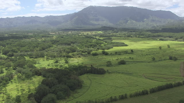 aerial very green brush and forest covering plateau with cloud shadows and mountains beyond / hawaii, united states - oahu bildbanksvideor och videomaterial från bakom kulisserna
