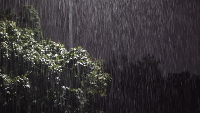 very heavy rain falling at night - scott mcpartland stock videos & royalty-free footage