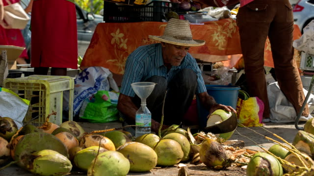 a very old active senior market vendor sells coconut water on the market of st. anne, martinique, west indies. - ワーキングシニア点の映像素材/bロール