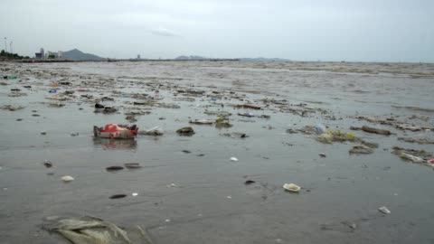 vídeos y material grabado en eventos de stock de muy contaminado beach - bolsa de plástico