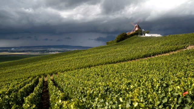 Verzenay windmill and vineyards of Champagne under stormy sky