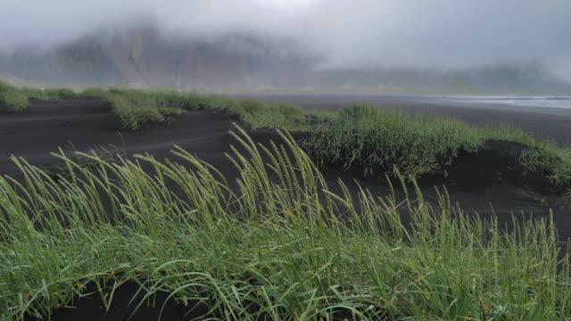 Vestrahorn-berg en strand in IJsland