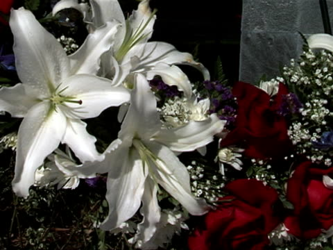 veteran's wreath 02 - stargazer lily stock videos & royalty-free footage