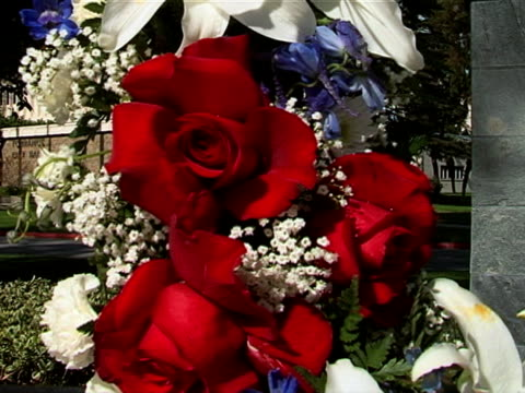 veteran's wreath 05 - stargazer lily stock videos & royalty-free footage