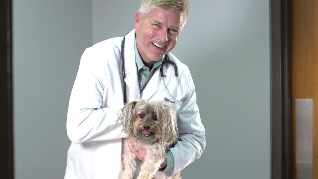 Veterinär petting hunden