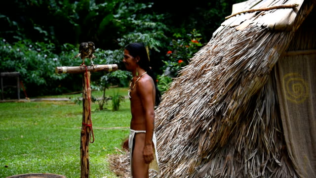 viñales or vinales valley scenes: recreation of the indian lifestyle - halmtak bildbanksvideor och videomaterial från bakom kulisserna