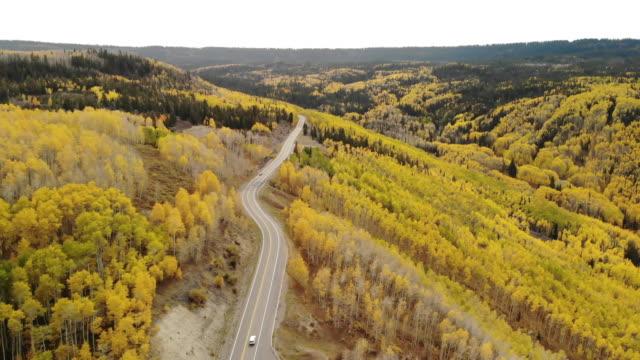 グランドメサ国有林観光と自動車旅行4kビデオシリーズの西コロラド州の鮮やかな秋の色 - 国有林点の映像素材/bロール