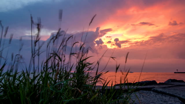 vibrant colorful sunset with moving clouds- time lapse - lago erie video stock e b–roll