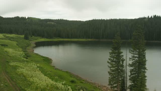 vídeos y material grabado en eventos de stock de vibrante bosque majestuoso y día lluvioso grand mesa national forest reservoir lake vibrant scenery 4k video - pinar