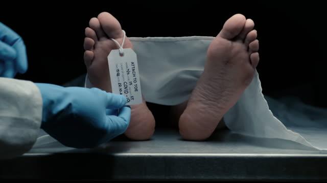 vídeos y material grabado en eventos de stock de víctima de covid-19 - funeral