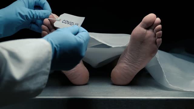 offer för covid-19 - offer människoroller bildbanksvideor och videomaterial från bakom kulisserna