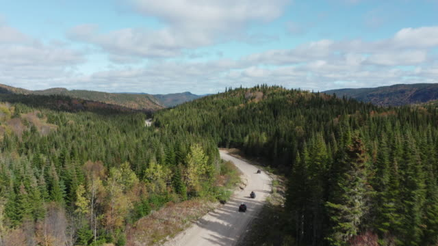 video aerial view of a group of people on atv's on road leading trough beautiful colorful autumn forest in sunny fall - off road racing stock videos & royalty-free footage