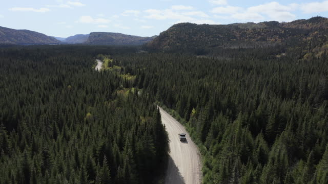 video, aerial view of a vehicle on road leading through beautiful colorful autumn forest in sunny fall, quebec, canada - car on road stock videos & royalty-free footage