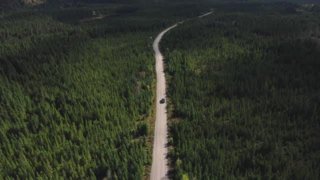 vidéos et rushes de vidéo, vue aérienne d'un véhicule sur la route menant à travers la belle forêt colorée d'automne en automne ensoleillé, québec, canada - poids lourd