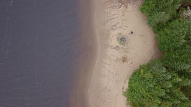森林で失われた 4 k 男のビデオ空撮 - 寒帯林点の映像素材/bロール