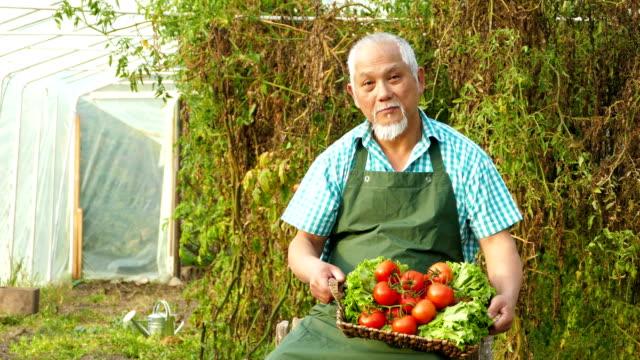 4K Video Aziatische boer holding mandje met groenten