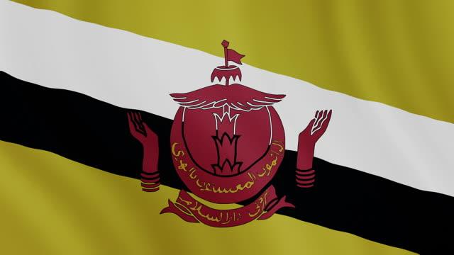4-k video : ฺbrunei waving flag - brunei stock videos & royalty-free footage