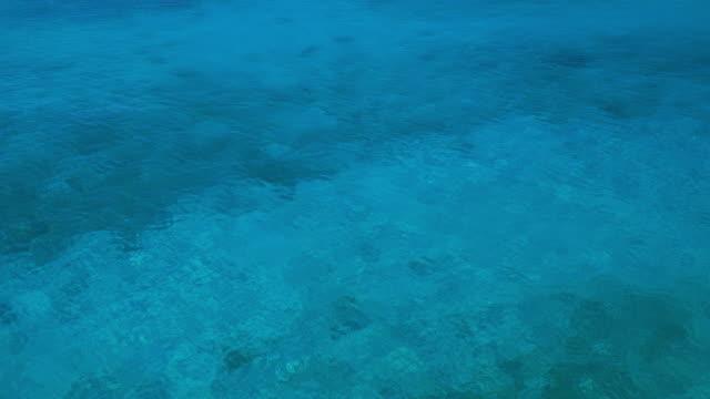 4K Video Caribische zeegezicht van Curacao en lagune