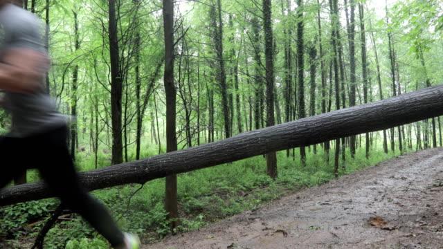 濡れた雨の森の木の上に飛び乗る大人の男のビデオ編集 - 障害物コース点の映像素材/bロール