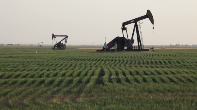 hd video crop rows and oil pumps western kansas - oljepump bildbanksvideor och videomaterial från bakom kulisserna
