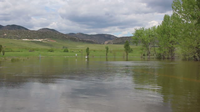 hd video flooded street and sign colorado chatfield state park - cottonwood tree stock videos and b-roll footage