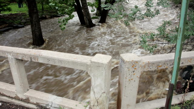 hd video flooding bear creek roars through morrison colorado - cottonwood tree stock videos and b-roll footage