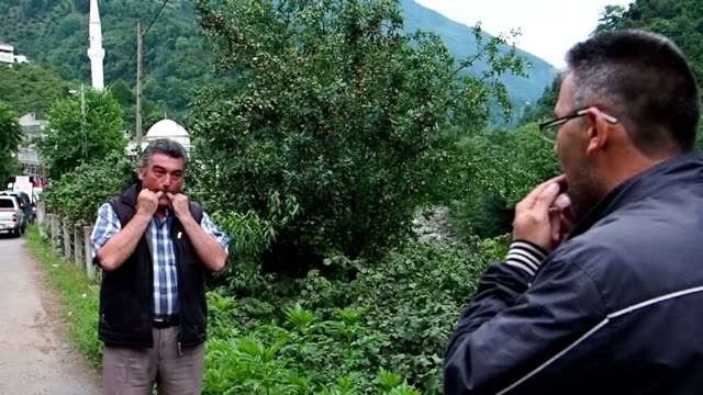 video footage taken in the remote turkish community of kuskoy located in the northeastern giresun province shows villagers showing off the skills at... - trillerpfeife stock-videos und b-roll-filmmaterial