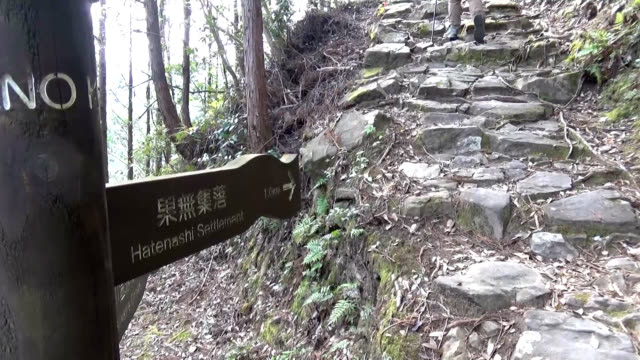 video footage taken in wakayama prefecture shows hikers traveling along a section of a pilgrimage route leading from kumanohongu shrine in tanabe to... - pellegrinaggio video stock e b–roll