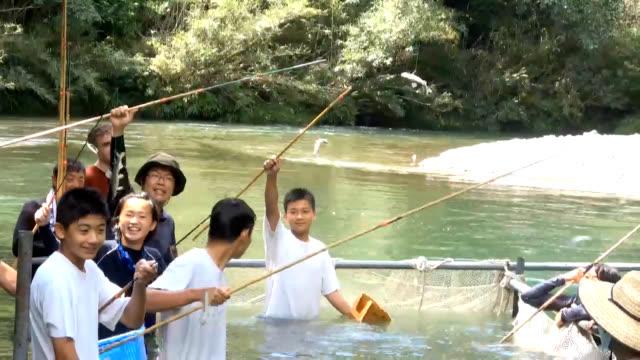 vídeos de stock e filmes b-roll de video footage taken july 29 in shimanto kochi prefecture shows a group of elementary and junior high school students using traditional bamboo poles... - peixe fresco