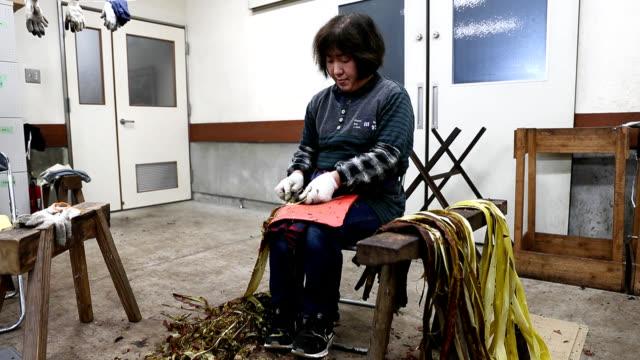 "video footage taken on jan 25 in mino gifu prefecture known for it its famed ""washi"" japanese paper shows artisans laying out strips of ""kozo"" a... - washi paper stock videos & royalty-free footage"