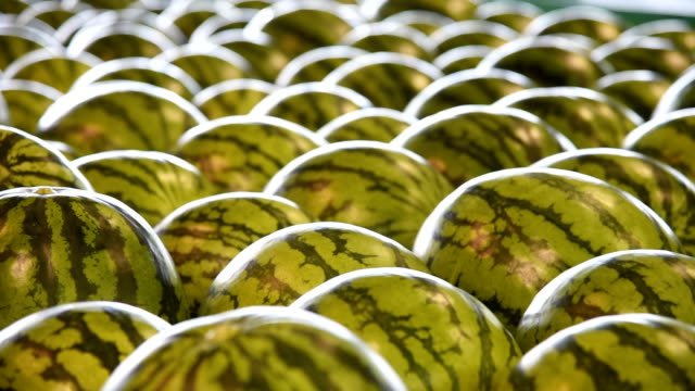 Video footage taken on June 19Japan in Matsumoto Nagano Prefecture shows the workings of a watermelon sorting and packing facility that local farmers...