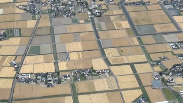 video footage taken on may 22 from above saga shows the saga plain one of the largest production areas for wheat and barley in japan as a tapestry of... - tapestry stock videos & royalty-free footage