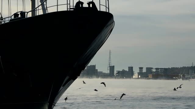 video footage taken on nov. 14 in the fishing port city of kesennuma, miyagi prefecture, shows trawlers passing through a harbor of frosty mist... - peschereccio video stock e b–roll