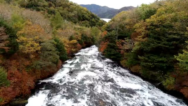 video footage taken on oct 12 from a drone flying near the ryuzu no taki waterfalls in nikko tochigi prefecture shows the colorful tapestry created... - tapestry stock videos & royalty-free footage