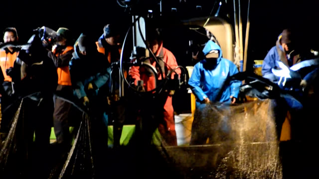 video footage taken on the night of march 19 off the coast of namerikawa toyama prefecture shows fishermen hauling in a large fishing net filled with... - toyama prefecture stock videos and b-roll footage